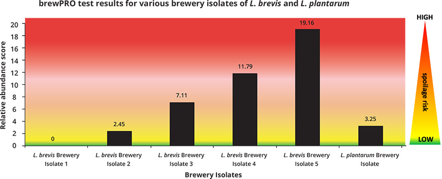 brewPRO Test Reults Graph